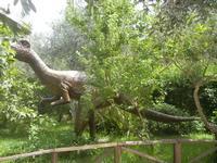 BIOPARCO di Sicilia - dinosauri - 17 luglio 2012  - Villagrazia di carini (292 clic)
