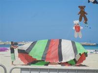 4° Festival Internazionale degli Aquiloni - 24 maggio 2012  - San vito lo capo (272 clic)