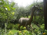 BIOPARCO di Sicilia - dinosauri - 17 luglio 2012  - Villagrazia di carini (306 clic)