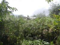 BIOPARCO di Sicilia - dinosauri - 17 luglio 2012  - Villagrazia di carini (298 clic)