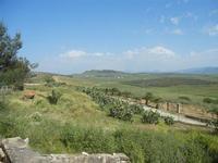SIRIGNANO - Agriturismo - panorama agreste - 1 maggio 2012  - Monreale (931 clic)