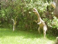 BIOPARCO di Sicilia - dinosauri - 17 luglio 2012  - Villagrazia di carini (291 clic)