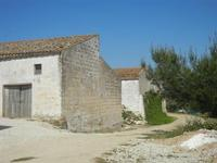 SIRIGNANO - Agriturismo - vecchie case - 1 maggio 2012  - Monreale (870 clic)