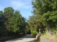 R.N.O. Bosco d'Alcamo - Monte Bonifato (253 clic)