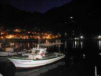 al porto di sera barche e scorcio della città - 18 settembre 2012  - Castellammare del golfo (528 clic)