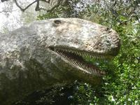 BIOPARCO di Sicilia - dinosauri - 17 luglio 2012  - Villagrazia di carini (1929 clic)