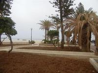 giardino pubblico sulla spiaggia - 29 aprile 2012  - San vito lo capo (382 clic)