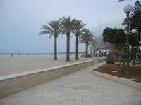 giardino pubblico  e palme sulla spiaggia - 29 aprile 2012  - San vito lo capo (406 clic)