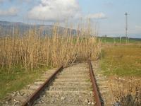 ex stazione ferroviaria binario morto - 4 marzo 2012  - Bruca (1115 clic)
