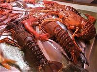 pesci in esposizione - locale sul porto - 18 settembre 2012  - Castellammare del golfo (511 clic)