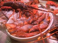 pesci in esposizione - locale sul porto - 18 settembre 2012  - Castellammare del golfo (418 clic)