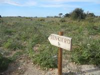 Riserva Naturale Orientata Capo Rama - 15 aprile 2012  - Terrasini (1648 clic)