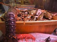 pesci in esposizione - locale sul porto - 18 settembre 2012  - Castellammare del golfo (1153 clic)