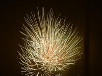 spettacolo pirotecnico - festeggiamenti in onore di Maria SS. dei Miracoli - 21 giugno 2012  - Alcamo (316 clic)