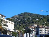 Viale Italia - palme e Monte Bonifato - 3 settembre 2012  - Alcamo (352 clic)