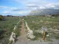 Riserva Naturale Orientata Capo Rama - 15 aprile 2012  - Terrasini (987 clic)