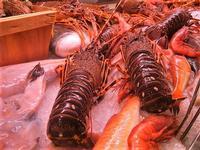 pesci in esposizione - locale sul porto - 18 settembre 2012  - Castellammare del golfo (504 clic)