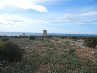 Riserva Naturale Orientata Capo Rama - torre di avvistamento - 15 aprile 2012  - Terrasini (687 clic)