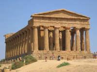 Tempio della Concordia  - Agrigento (3356 clic)