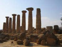 Tempio di Ercole  - Agrigento (3875 clic)