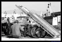 Pescatore sulla banchina  - Trapani (6405 clic)