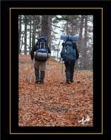 Escursionisti in autunno   - Etna (1560 clic)