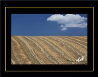 paesaggio rurale   - Erei (1824 clic)