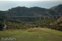 paesaggio  - Siculiana (2385 clic)