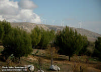 La centrale eolica  - Siculiana (2461 clic)