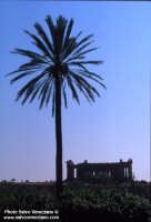 Valle dei templi  - Agrigento (2007 clic)