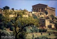 valle dei Templi  - Agrigento (2738 clic)