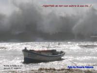 La forza della Natura si manifesta quanto meno te lo aspetti....e che male!!!!  - Palma di montechiaro (3933 clic)