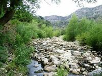 Gole di Tiberio.La natura non ha bisogno dell'uomo, l'uomo ha bisogno della natura.   - San mauro castelverde (832 clic)