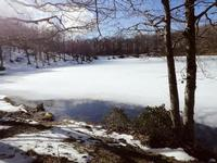 Il lago ghiacciato che riscalda il cuore.   - Cesarò (1408 clic)