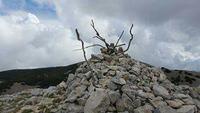 Mucchio di sassi. Non appena si raggiunge la cima di Pizzo carbonara è di buon auguro per ogni alpinista prendere una pietra e porla sopra al mucchio.  - Piano battaglia (1959 clic)