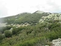 Viaggio verticale verso Pizzo Carbonara   - Piano battaglia (1123 clic)