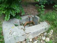 Ingegneria di irrigazione idraulica, presso l'orto botanico  PALERMO Paola Porcello