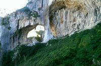 La grotta grattara   - Gratteri (2389 clic)