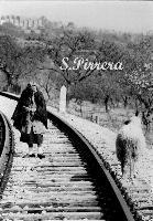 La vecchia ferrovia   - Agrigento (810 clic)