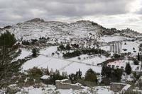 Portella del Tauro La neve del 2017  - Caltanissetta (1260 clic)