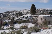 Sartania La neve del 2017  - Caltanissetta (1199 clic)