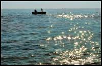 Buona pesca  - Riserva dello zingaro (7869 clic)