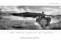 un altro giorno di lavoro  - Caltanissetta (3881 clic)