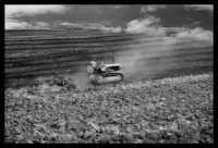 terra bruciata   - Caltanissetta (3432 clic)