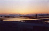 Tramonto dietro le saline di Marsala  - Marsala (2119 clic)