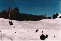Piano Provenzana. La neve copre un cartello stradale  - Etna (2442 clic)