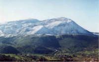Romitello coperto di neve visto da Montelepre, (purtroppo non ricordo il nome del monte)  - Montelepre (8159 clic)