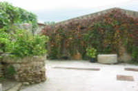 via bernardo (antico pozzo e pietra macina)  - Serro di villafranca tirrena (5956 clic)