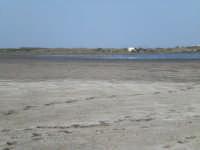 Pantano di Morghella uccelli gabbie allevamento marino  pantano e saline di Morghella     - Pachino (4179 clic)