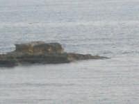 costa dell'Ambra forgia pANTANO cONCERIE cIARAMIRARO  - Pachino (2060 clic)